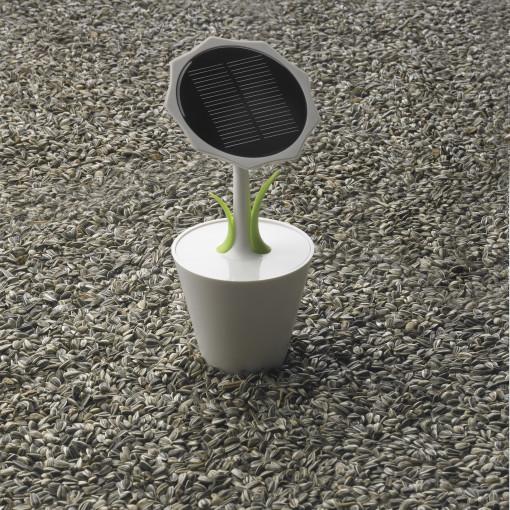 Relatiegeschenk Solar Sunflower bedrukken