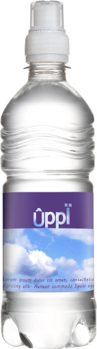 Relatiegeschenk Waterfles Sport bronwater 500 ml